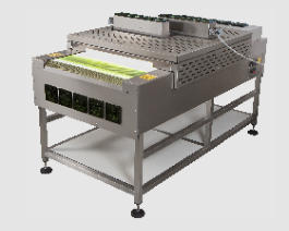 UV Curing Conveyor
